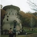 写真: Rolleicord_キノコの家