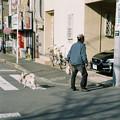 Photos: Leica こっちいこうよ-000019