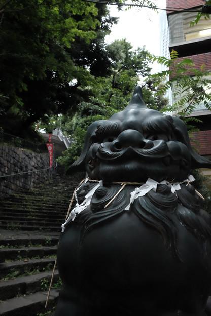 愛宕神社_狛犬-4131