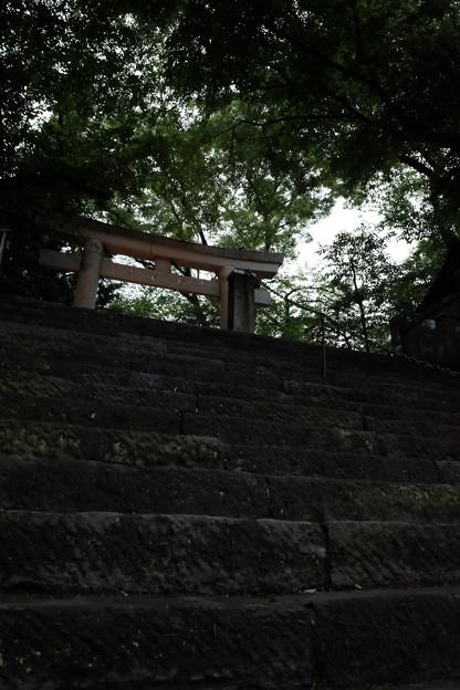 愛宕神社_鳥居-4135
