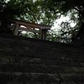 写真: 愛宕神社_鳥居-4135