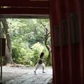 写真: 武蔵一宮氷川神社_鳥居-7857