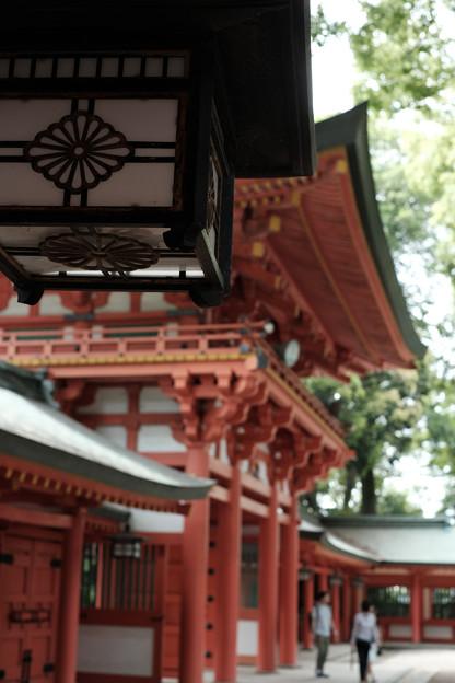 武蔵一宮氷川神社-7846