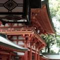 写真: 武蔵一宮氷川神社-7846