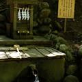 写真: 宝登山神社-7884