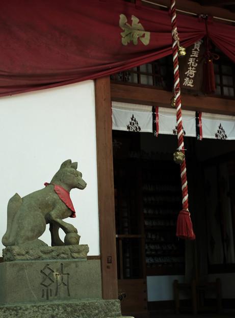 写真: 宝玉稲荷神社-7878