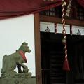 Photos: 宝玉稲荷神社-7878