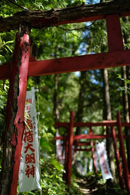 上之台稲荷神社-7892