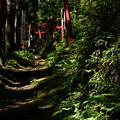 写真: 上之台稲荷神社-7898