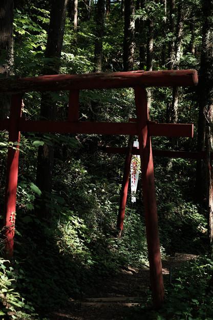 上之台稲荷神社-7919