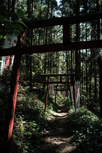 写真: 上之台稲荷神社-7920