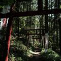 上之台稲荷神社-7920