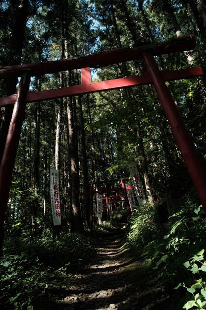上之台稲荷神社-7924