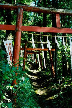 minoltacl_上之台稲荷神社_鳥居-000028