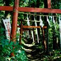 Photos: minoltacl_上之台稲荷神社_鳥居-000028