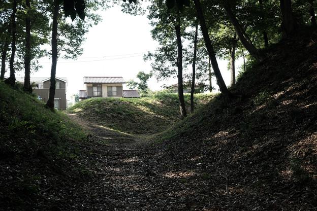 滝の城_01空堀-8212