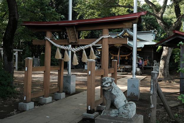 滝の城_04主郭_城山神社-8222