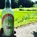 Photos: 玉川温泉 サイダー 有馬温泉てっぽう水