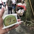 写真: 深大寺 草餅