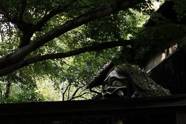 深大寺_鬼太郎茶屋-8308