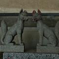 写真: 鉢形城_稲荷-8476