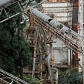 写真: 奥多摩工場-8520