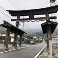 写真: 武田八幡宮二ノ鳥居
