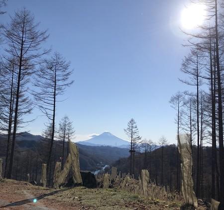 大菩薩峠より富士山を望む