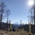 写真: 大菩薩峠より富士山を望む