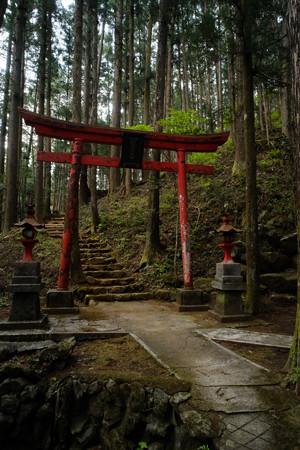 朝日稲荷神社_05左は緩やかな登り道-9173