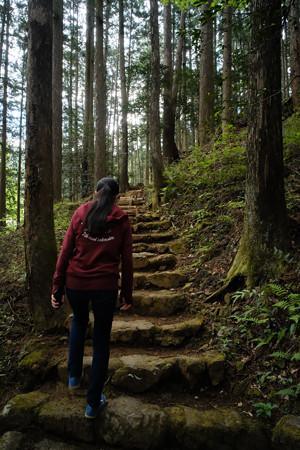 朝日稲荷神社_08左の参道_こちらからゆるゆる登ります-9178