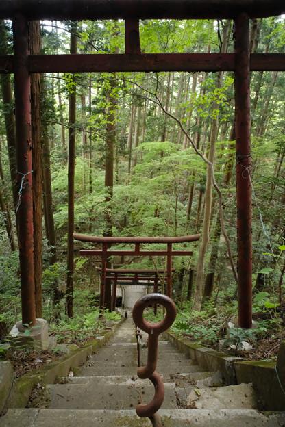 朝日稲荷神社_10途中で参道がクロス_下を見下ろす-9181