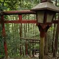 朝日稲荷神社_急な参道を降りるのは・・・-9211
