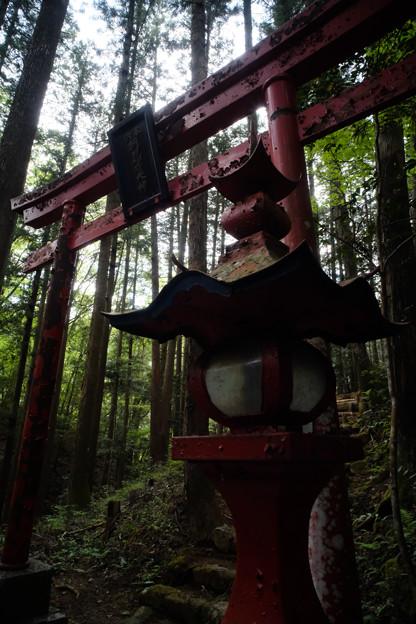 朝日稲荷神社_紅い鳥居-9177