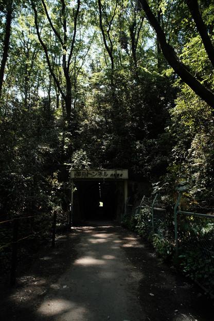 トンネル_08御岳トンネル-9262