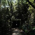 Photos: トンネル_08御岳トンネル-9262