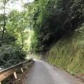 Photos: 奥多摩むかし道