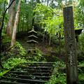 瀧尾神社_GXR-0048289