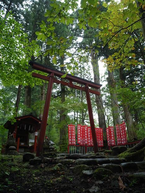 瀧尾神社_稲荷_GXR-0048294