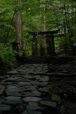 瀧尾神社_運試しの鳥居-9928