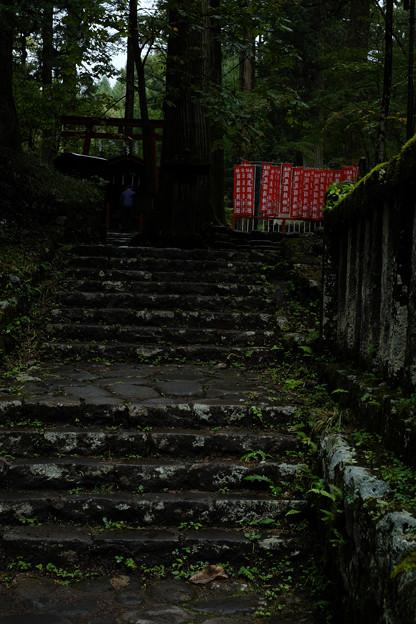 Photos: 瀧尾神社_稲荷-9949