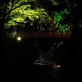 Photos: 夜の高山-0482