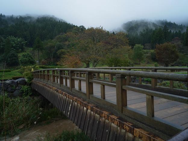 Photos: 一乗谷 橋-0048329