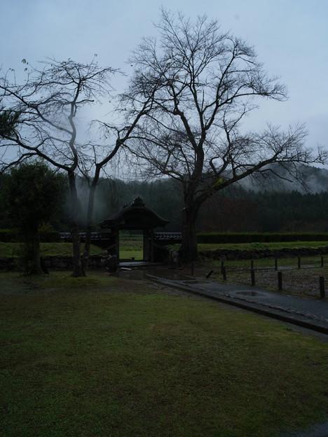 一乗谷朝倉館 中から門を望む-0048338