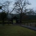 Photos: 一乗谷朝倉館 中から門を望む-0048338