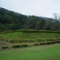 Photos: 一乗谷 土塁-0048359