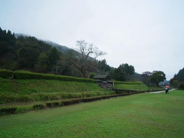 Photos: 一乗谷 土塁-0048360