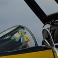 Photos: F4EJ ケロヨン-0654
