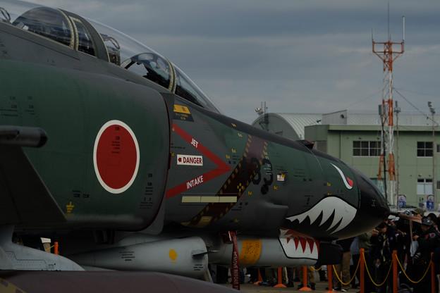 RF4EJ シャークティース-0667