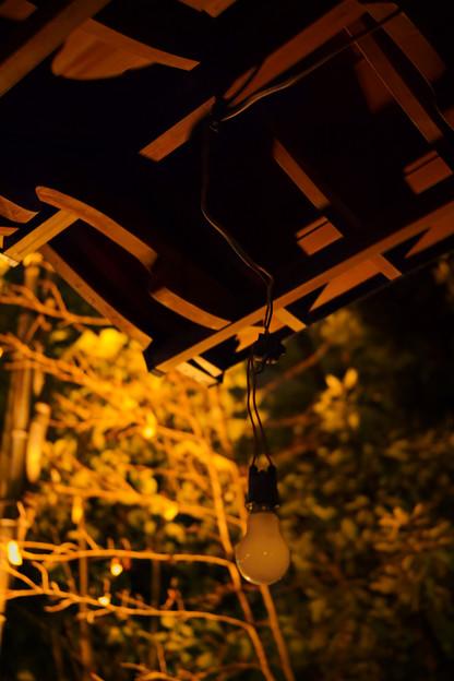 夜の神明神社-0155